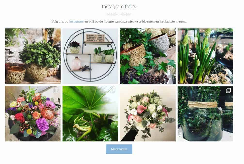 , Instagram op je WordPress website